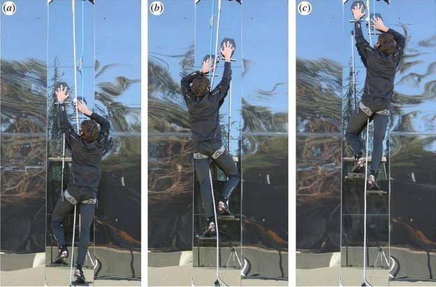 Watch scientist climb the wall like Spider-man in gecko inspired gloves