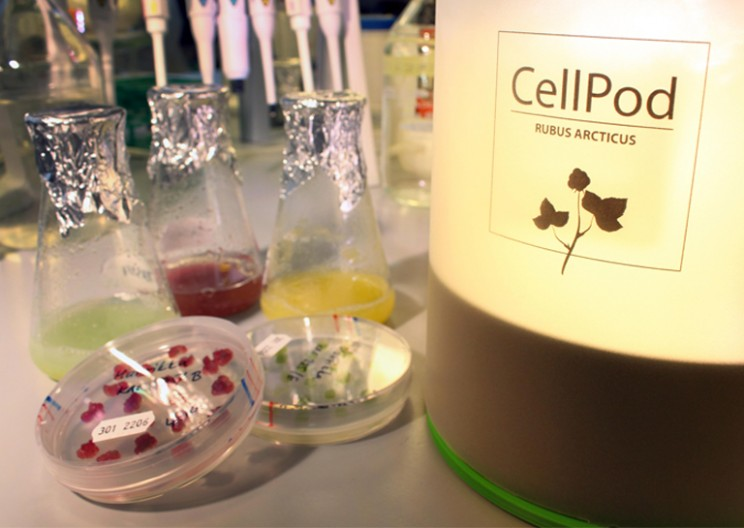 CellPod: The 3D-printed Bio-Tech Gadget Grows Plants by Cells at Home