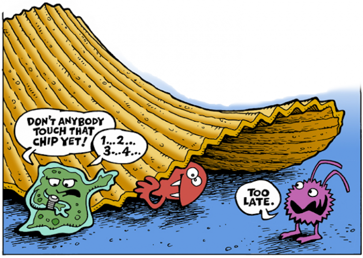 """The 5 Second Rule is False,"" Says Science"