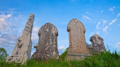 New burial method offers an eco-friendly alternative