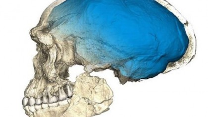 New Discovery of 300,000-Year-Old Homo Sapiens Fossils Rewrites Human History