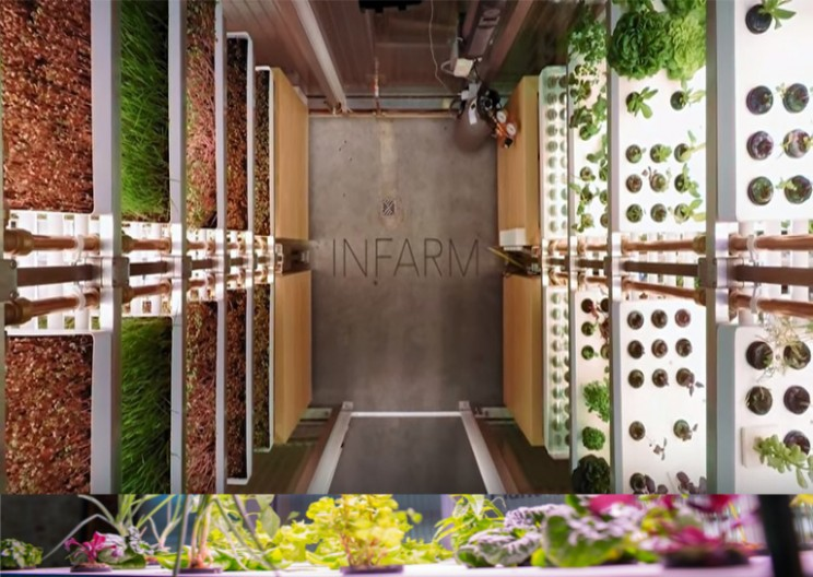 Vertical Farming Revolution Is Coming To A Store Near You