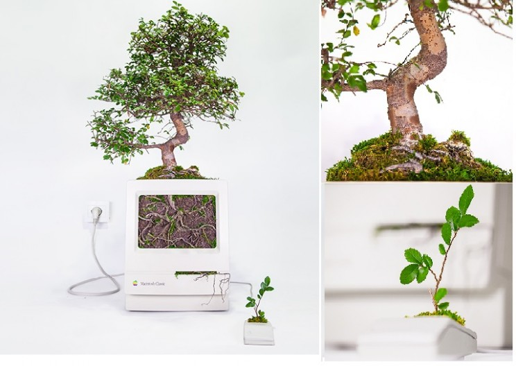 'Plant Your Mac': Giving New Life to Antiquated iMacs