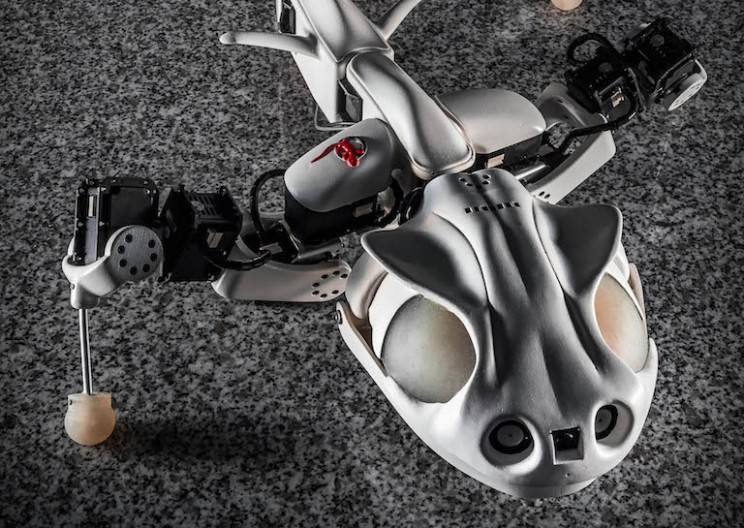 Engineers Create Stunningly Accurate Salamander Robot