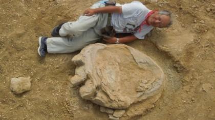 Massive, 70 Million-Year-Old Dinosaur Footprint Found in Gobi Desert