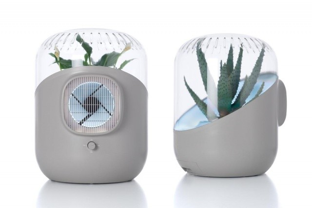 Andrea air purifier makes plants 1000% more effective
