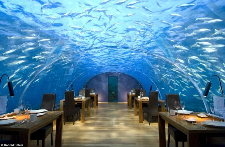 Dine in luxury and beauty at the Conrad Maldives Ithaa underwater restaurant