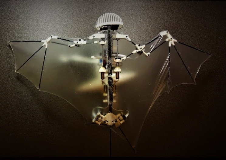 Researchers Develop a Revolutionary Aerial Robot Inspired by Bats
