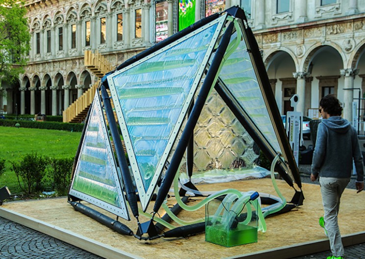Algae Canopy Generates 4 Hectares Equivalent of Oxygen