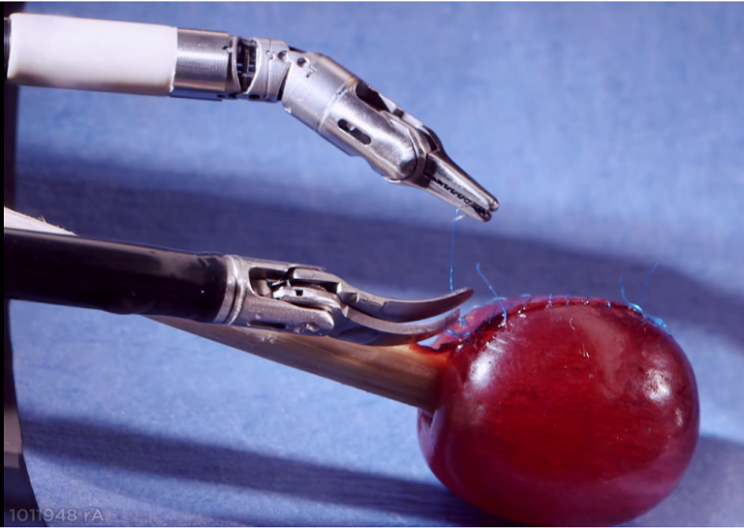 Robotic Surgeon Stitches Grape Skin Back On