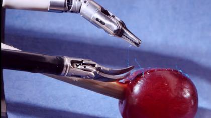 Robotic Surgeon Stitches Grape Skin Back On