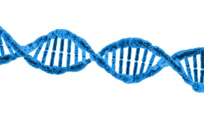DNA Data Encryption Now Possible