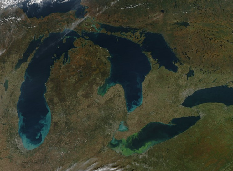 Are toxic algal blooms increasing due to climate change?