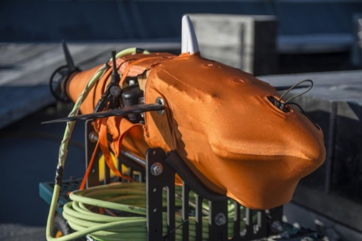 Robotic shark is being tested by US Navy