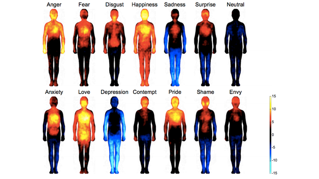 Emotional Atlas Shows Where Each Emotion Affects the Body