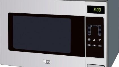 How Do Microwaves Cook Food?