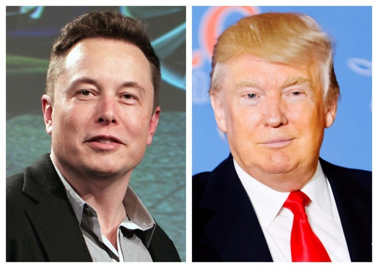 What Elon Musk's Addition to Trump's Advisory Team Means