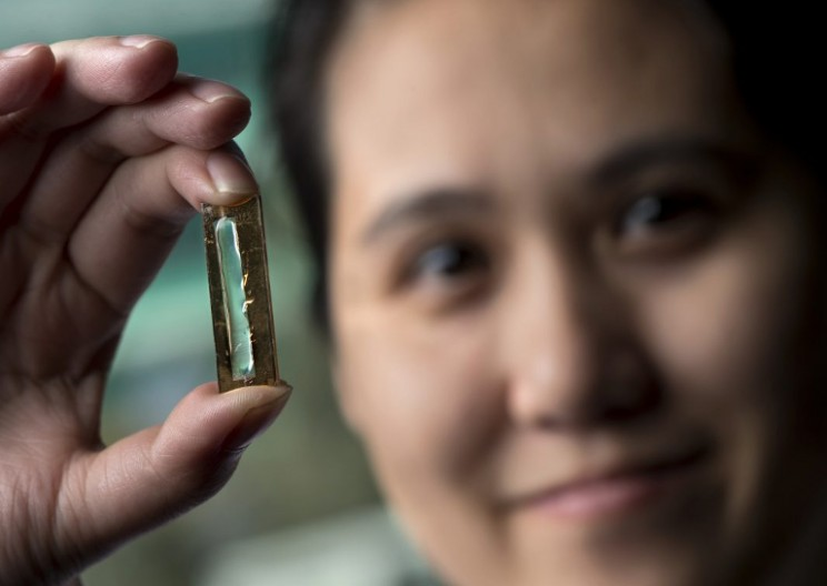 Extraordinary Nanowire Battery Can Be Charged Over 200,000 Times
