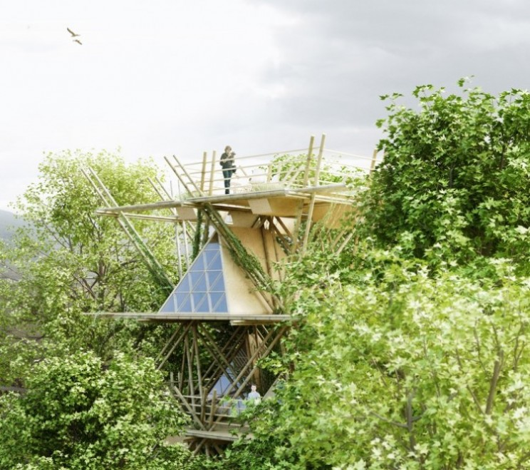 Eco-hotel bamboo tree house concept offers visitors a bird's eye view