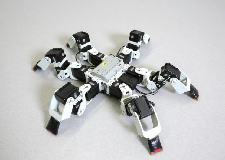 This Insect-Inspired Robot Has People Totally 'Bugging'
