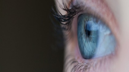 Stem Cell Study Restores Long-Term Vision in Blind Mice