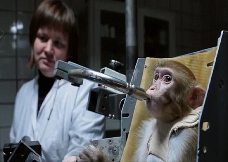 Russians are getting ready to send monkeys to Mars
