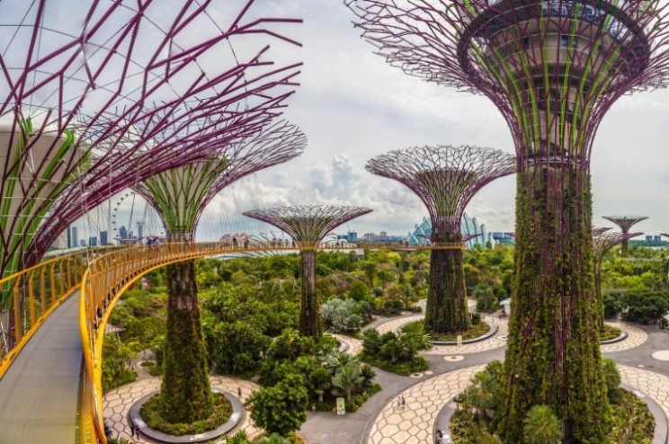 'Gardens by the Bay' in Singapore is Jaw Dropping