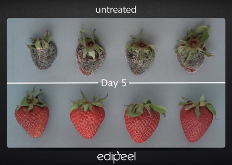 Fruits and Vegetables Coated with this Edible Peel Last Five Times Longer