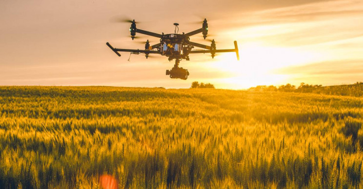 AgriTech: 3+ Ways We Plan to Feed the Future