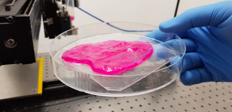 Israeli Startup 3D Prints Juicy Steaks by Using Cellular 'Ink'