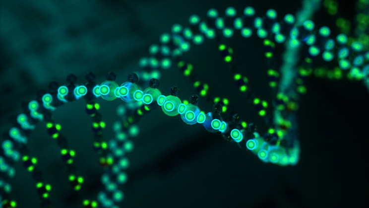 Scientists Turn to Living Bacteria DNA for Data Storage