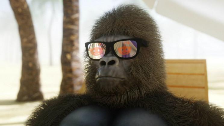 GameStop Redditors Invest in Gorilla Conservation