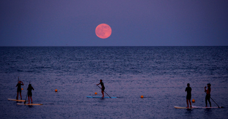 How to Watch the 'Strawberry Moon' on Friday