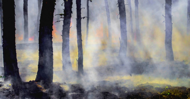 Northern Siberian 'Zombie Fire' Burning at Nearly -60 Degrees Fahrenheit