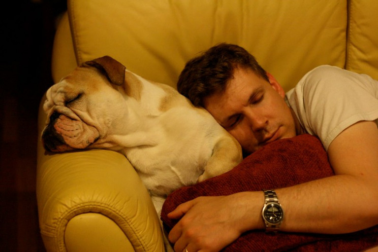 what happens when we sleep