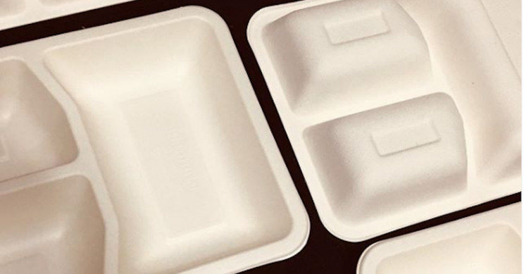 100% Biodegradable Tableware That Will Turn into Soil in 90 Days