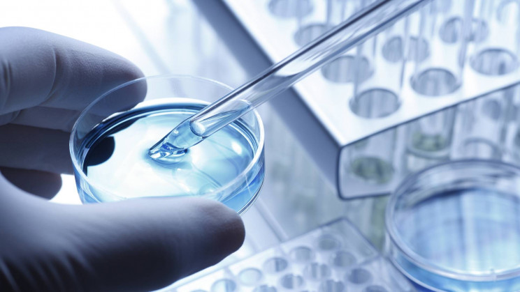 Study Finds Dish-Grown Cancer Cells Don't Reflect the Cancer Cells in People