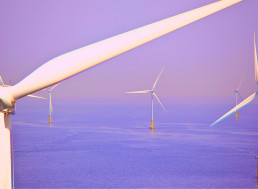 The US Government Plans to Transform Its Coastlines Into Colossal Offshore Wind Farms