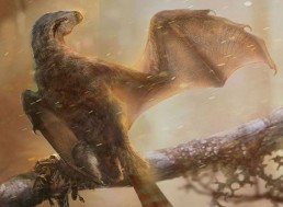 Scientists Discover Second Bat-like Dinosaur in China