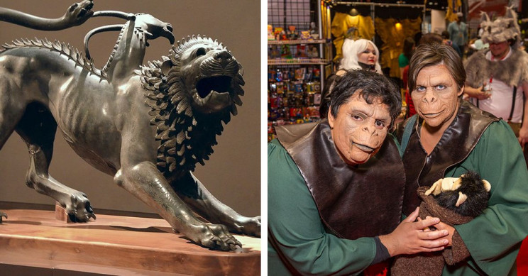 Fascinating History of Chimeras: 7 Examples From Fantasy to Reality