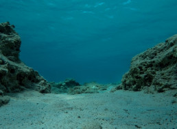 MIT Researchers Create Underwater Sensors That Don't Require Batteries