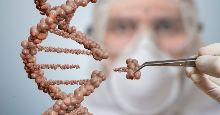Could Genetic Engineering Be the Answer To Stamping Out Racism?
