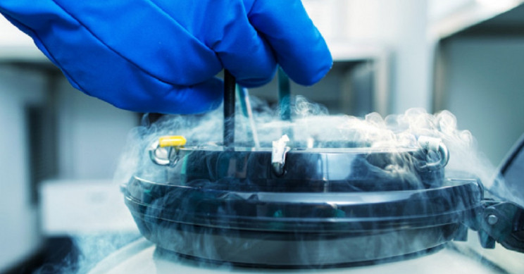 Science or Scam? 9 Things You Should Know Before You Sign up for Cryonic Suspension