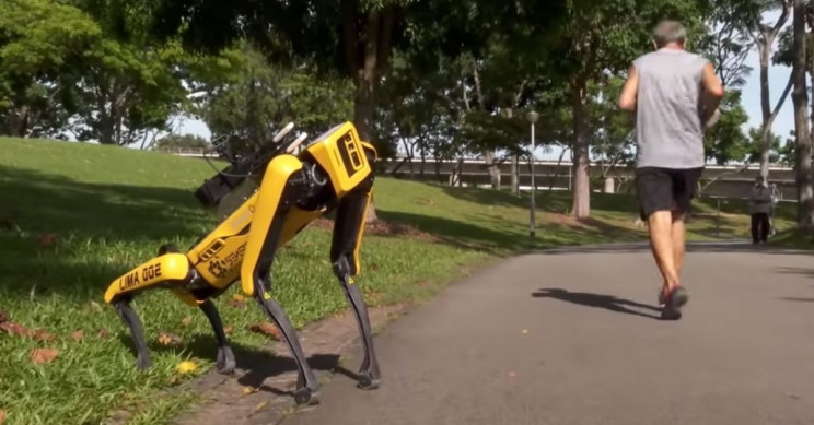 Spot the Robot Now Used in Singapore to Implement Social Distancing in Parks
