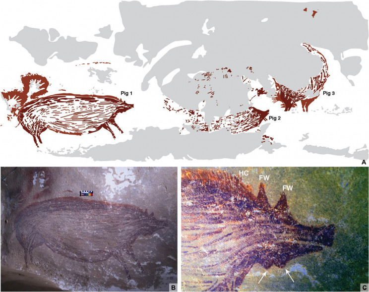 45,500-Year-Old Pig Painting May Be World's Oldest Animal Art