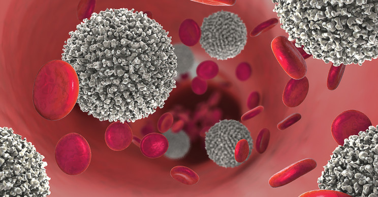 Researchers Find a New Achilles Heel for Blood Cancers