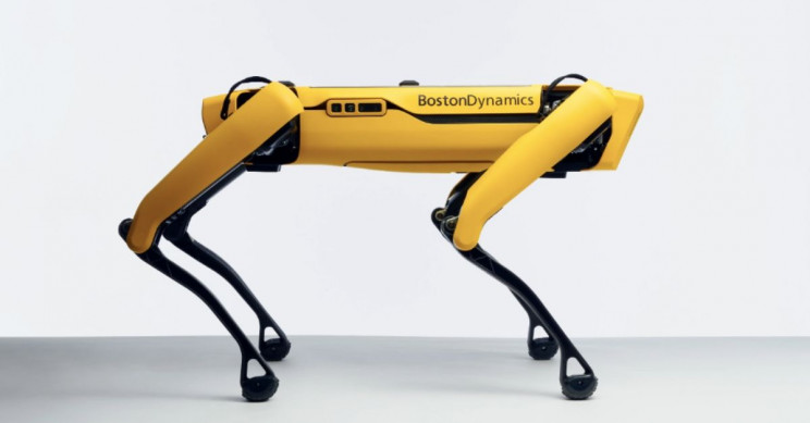 Boston Dynamics' Robot Dog Spot Is Now on Sale for $74,500