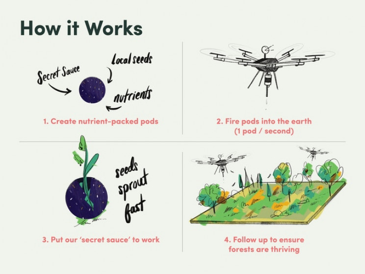 These Drones Will Plant 1 Billion Trees in Just 8 Years
