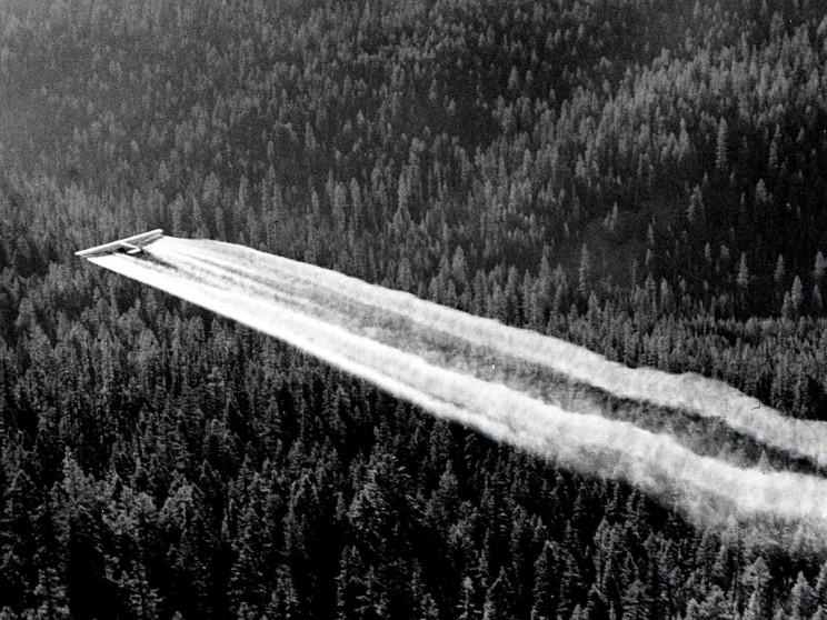 DDT Ban in 1972