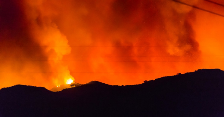 Fighting Fire With Fire Found to be Effective in Reducing Wildfires